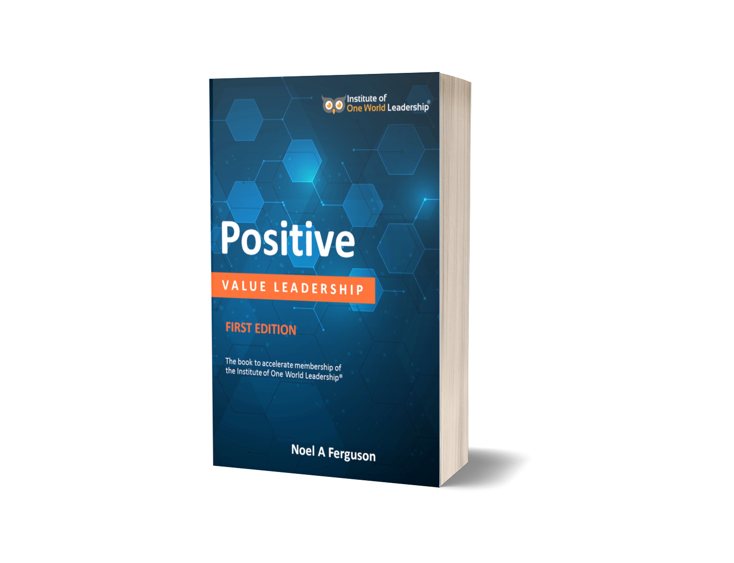 Positive Value Leadership